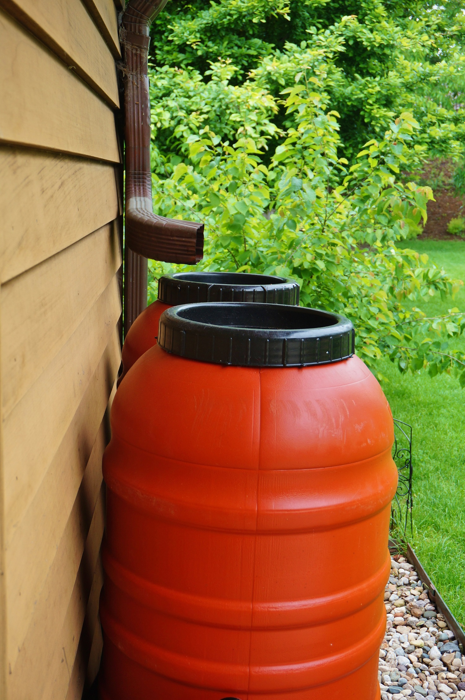Rain barrels collecting water in the garden