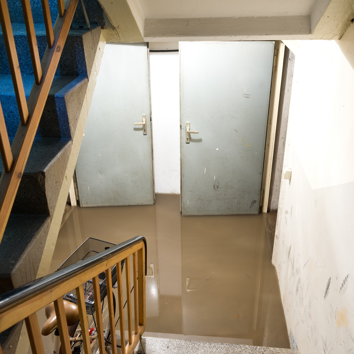 Signs of Water Damage in Your Basement